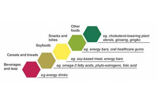 functional foods sciencelearn hub
