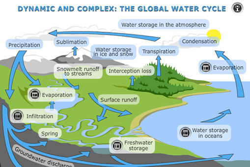 Watercycle Sciencelearn Hub