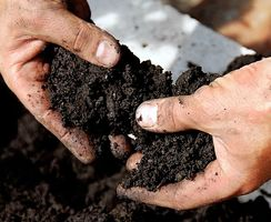 Soil, farming and science